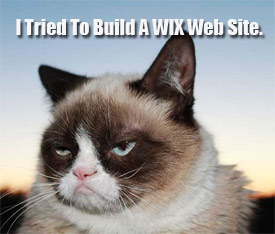 Is a Free WIX Web Site Really Free?